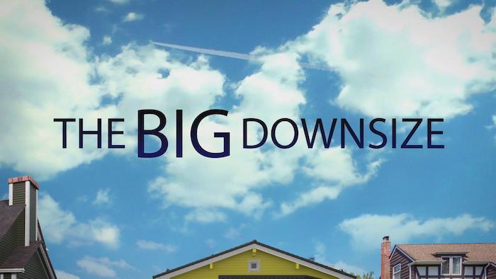 TheBigDownsize
